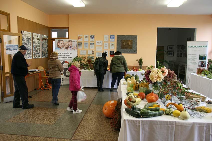 Výstava na MěSOŠ